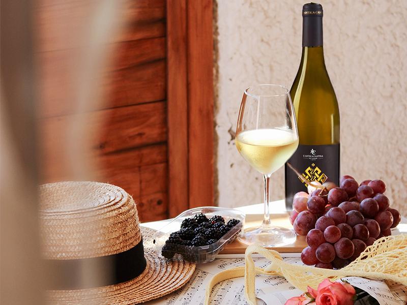 Castrum Bianco San Severo DOP: un vino della tradizione Pugliese