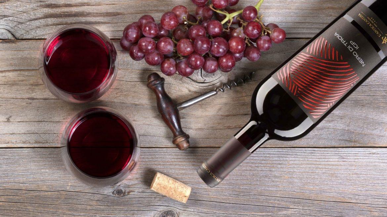 Nobiles Nero di Troia: vitigno storico della nobiltà enologica pugliese